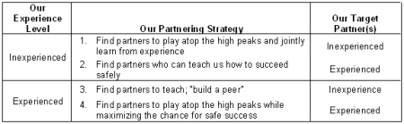 partneringstrategy